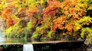 12 Arkansas Forests You Absolutely Have To Explore This Fall