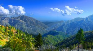 Get Lost In These 4 National Forests In Southern California