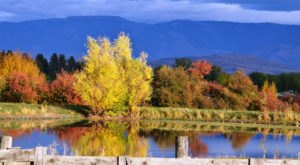 8 Country Roads In Oregon That Are Pure Bliss In The Fall