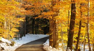 11 Country Roads In Vermont That Are Pure Bliss In The Fall
