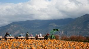 The Ultimate And Definitive Montana Bucket List For Fall