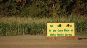 Get Lost In These 9 Awesome Corn Mazes In Arkansas This Fall