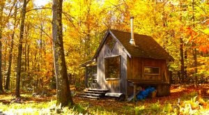 These 12 Cozy Cabins Are Everything You Need For The Ultimate Fall Getaway In Massachusetts