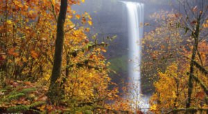 This Gorgeous State Park In Oregon Is Simply Perfect For A Fall Getaway