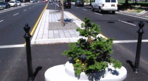 The World's Smallest Park Is Hiding Right Here In Portland And You Need To Visit