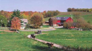 12 Picture Perfect Places In Ohio Amish Country You'll Want To Explore