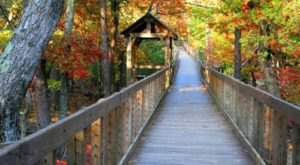 Get Lost In This Breathtaking National Forest In Alabama
