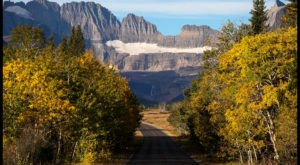 7 Country Roads In Montana That Are Pure Bliss In The Fall