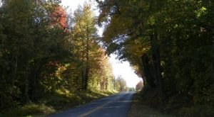 11 Country Roads In Kentucky That Are Pure Bliss In The Fall
