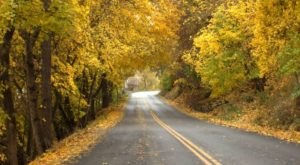 This Charming Idaho Town Is Picture Perfect For An Autumn Day Trip