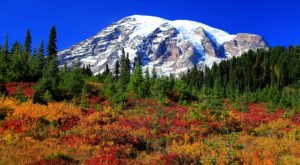 The 11 Best Places In Washington To See Brilliant Fall Colors
