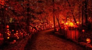 Visit This Kentucky Park For A Spectacular Light Show This October