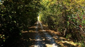 You've Never Experienced Anything Like This Epic Abandoned Railroad Hike In Missouri