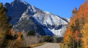 8 Country Roads In Nevada That Are Pure Bliss In The Fall