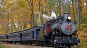 Take This Fall Foliage Train Ride Through Delaware For A One-Of-A-Kind Experience