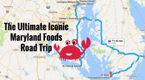The Ultimate Iconic Maryland Foods Road Trip That Will Delight Your Taste Buds
