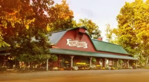 These 10 Charming Apple Orchards In Indiana Are Great For A Fall Day