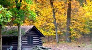 These 10 Cozy Cabins Are Everything You Need For The Ultimate Fall Getaway In Oklahoma