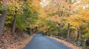 This Country Road In New Jersey Is Pure Bliss In The Fall