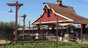 There's A Restaurant On This Remote Southern California Farm You'll Want To Visit