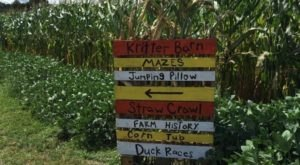 Get Lost In These 7 Awesome Corn Mazes In Tennessee This Fall