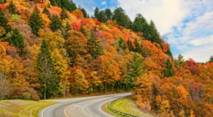 7 Country Roads In Tennessee That Are Pure Bliss In The Fall