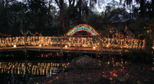 If You Live In Florida, You'll Want To Visit This Amazing Park At Least Once