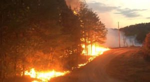Wildfires Are Raging Through Alabama And Are Devastating Parts Of The State