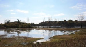 The Stunning Nature Preserve Hiding In Indiana Most People Don't Know About