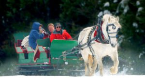 It's Not Christmas In Wyoming Until You Do These 13 Enchanting Things