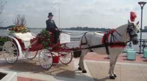 These 6 Horse Drawn Carriage Rides In Pennsylvania Are Pure Magic