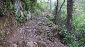One Of The Most Treacherous Hikes In America Is Right Here In Tennessee