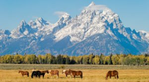 10 Things People Miss The Most About Wyoming When They Leave