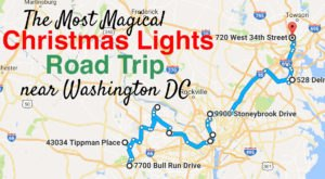 The Christmas Lights Road Trip Around Washington DC That's Nothing Short Of Magical