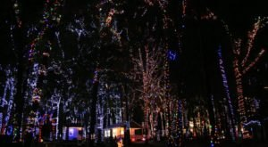 11 Christmas Light Displays In Alabama That Are Pure Magic