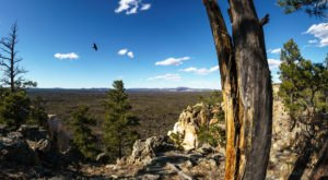 The Best New Mexico Hike You've Never Heard Of But Need To Take