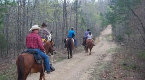 The Winter Horseback Riding Trail In Missouri That's Pure Magic