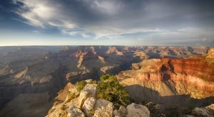 14 Things Every True Arizonan Does At Least Once Before They Die
