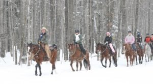 This Winter Horseback Riding Trail In Michigan Is Positively Magical