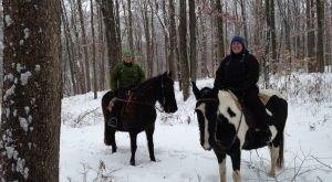 The Winter Horseback Riding Trail At Equestrian Ridge Farm In Ohio Is Pure Magic