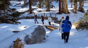 11 Picturesque Trails In Southern California That Are Perfect For Winter Hiking