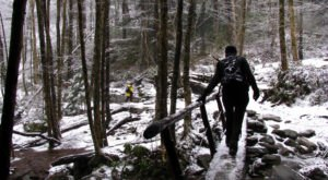 7 Picturesque Trails In Tennessee That Are Perfect For Winter Hiking