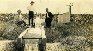 These 14 Rare Photos Show Kansas's Farming History Like Never Before