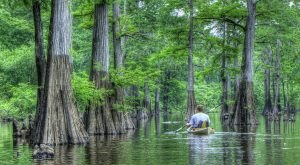 10 Things People From Louisiana Always Have To Explain To Out Of Towners