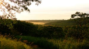 8 Magnificent Trails You Have To Hike In North Dakota Before You Die