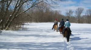 The Winter Horseback Riding Trail In Minnesota That's Pure Magic