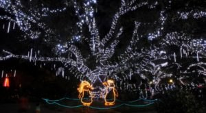 If You Live Near New Orleans, You'll Want To Visit This Amazing Park This Winter