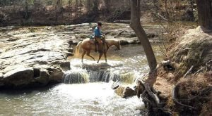 The Winter Horseback Riding Trail In Louisiana That's Pure Magic