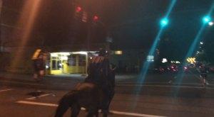 The Mysterious Night Horseman Riding Around Portland Has Everybody Talking