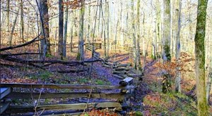 The Easy 1-Mile Winter Hike In Tennessee That's Positively Bewitching